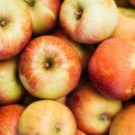 чемпион 150x150 - Сорт яблони Чемпион